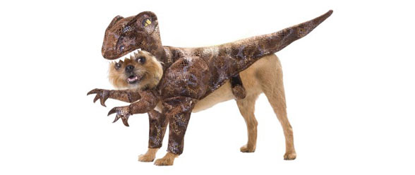 Animal Planet Raptor Pet Costume Size Medium